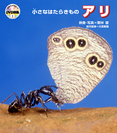 ・自然なぜなに?DVD図鑑 第2巻小さなはたらきもの アリ