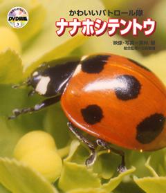 ・自然なぜなに?DVD図鑑 第3巻かわいいパトロール隊 ナナホシテントウ