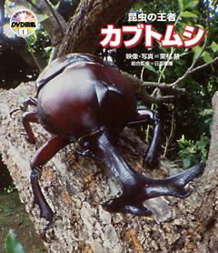 ・自然なぜなに?DVD図鑑 第1巻昆虫の王者 カブトムシ